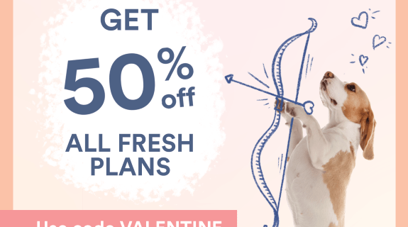 Spot and Tango Valentine's Day Deal: Get 50% Off First Box!