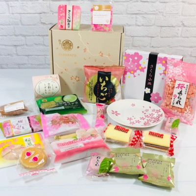 Sakuraco March 2021 Subscription Box Review + Coupon