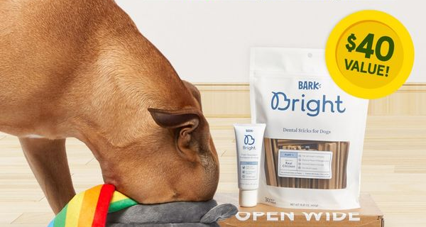Bark Bright Coupon:  Free Pot of Gold Toy with Subscription!