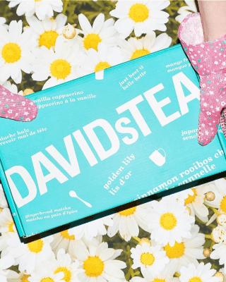 David's Tea Tasting Club Summer 2021 Full Spoilers!