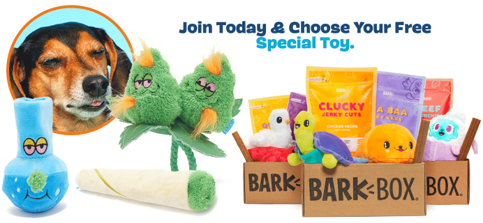 BarkBox Coupon: FREE 420 Inspired Bonus Toy With Subscription!