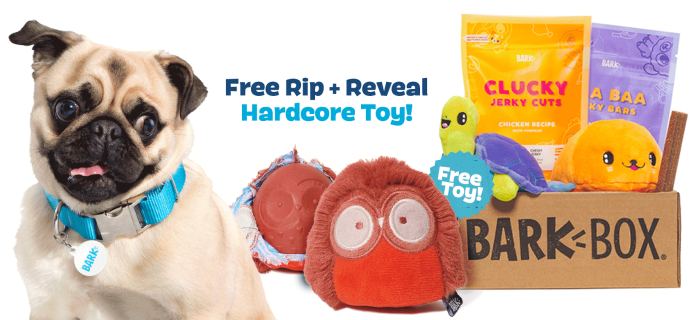 BarkBox Coupon: FREE Olga The Owl Rip & Reveal Toy With Subscription!