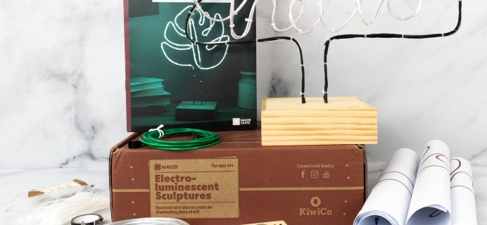 Maker Crate Review + Coupon – ELECTRO-LUMINESCENT SCULPTURES