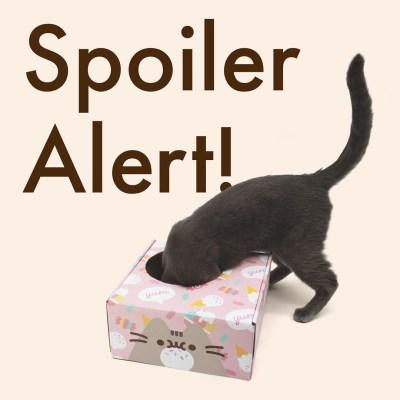 Cat Kit by Pusheen Box Summer 2021 Spoiler #1!