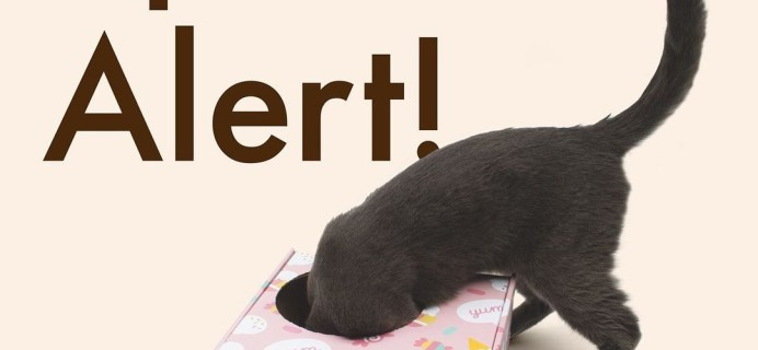Cat Kit by Pusheen Box Summer 2021 Spoiler #3!