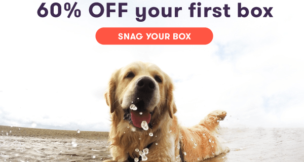 Ollie Dog Food Pet Appreciation Week Sale: 60% Off First Box!