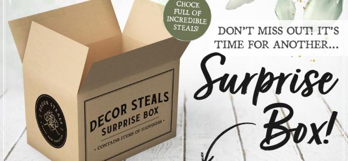 Decor Steals Surprise Box Available NOW!