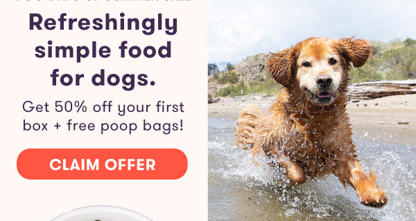 Ollie Dog Food Dog Days of Summer Sale: Get 50% Off First Box + FREE Poop Bags!