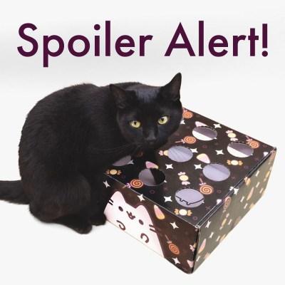 Cat Kit by Pusheen Box Fall 2021 Spoiler #1!