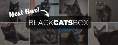 Cat Lady Box October 2021 Theme Spoilers + Coupon!