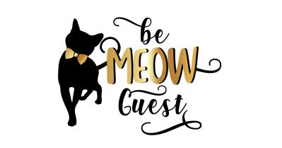 Cat Lady Box November 2021 Theme Spoilers!