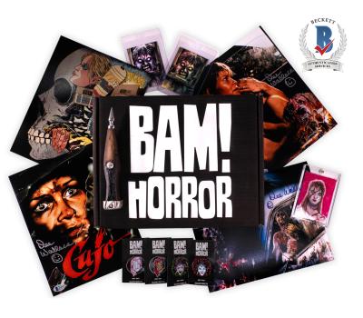 The BAM! Horror Box November 2021 Franchise Spoilers!