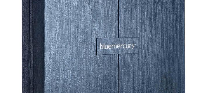 Blue Mercury Advent Calendar 2021: 31 Days of Dazzle!